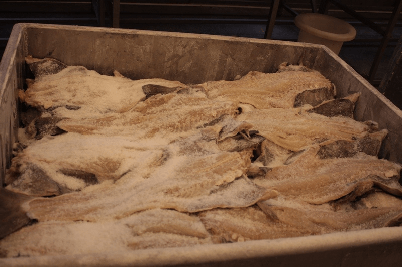 Codfish in drying | Imports, exports and distribution of fishing products | ender